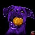 Purple Boxer Mix Dog Art - 8173 - Bb by James Ahn