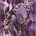 Purple Cactus Canvas by Carol Groenen