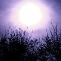Purple Eclipse by Greg Joens
