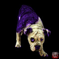 Purple English Bulldog Dog Art - 1368 - Bb by James Ahn
