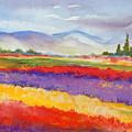 Purple Fields by Caroline Patrick