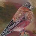 Purple Finch by Joe Rudski