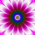 Purple Flower by Galina Lavrova
