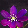 Purple Flower by Lynda McDonald