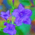 Purple Flowers 102310 by David Lane
