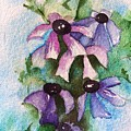 Purple Flowers by Sandi Stonebraker
