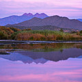 Purple Four Peaks Reflections by Dave Dilli