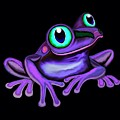 Purple Frog  by Nick Gustafson