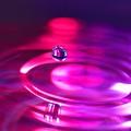 Purple Haze by Jimmy Ostgard