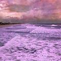 Purple Majesty  by Betsy Knapp