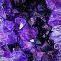 Purple Majesty by Teresa Wilson