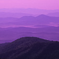 Purple Mountains by Joye Ardyn Durham