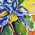 Purple Orchid by Julie Kerns Schaper - Printscapes