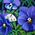 Purple Pansies And White Moth by Minaz Jantz
