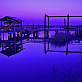 Purple Perspectives by Laura Ragland
