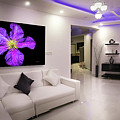 Purple Petals In Room by Bill Posner