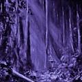 Purple Planet by Eugene Budden