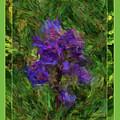 Purple Png Flower by Shirley Dawson