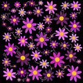 Purple Polka by Mark Rogan