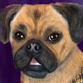 Purple Pug Portrait by Becky Herrera