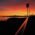 Purple Rail by John Finch