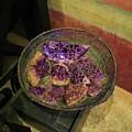 Purple Rocks by Michelle Powell