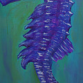 Purple Seahorse by Corby Bender