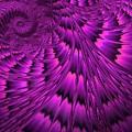 Purple Shell by John Edwards