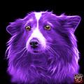 Purple Shetland Sheepdog Dog Art 9973 - Bb by James Ahn