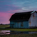 Purple Sky by Angela Mocniak