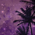 Purple Sky Palm by UMe images