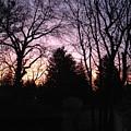 Purple Sunrise by Lauren Braybon