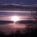 Purple Sunrise by Teresa Schomig