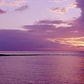 Purple Sunset At Kapalua Beach by John Hyde - Printscapes
