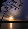 Purple Sunset by Bruce Brandli