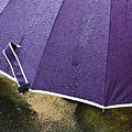 Purple Umbrella by Marion McCristall