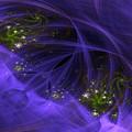 Purple Universe by Ann Garrett