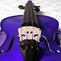 Purple Violin And Music Ix by Helen Northcott