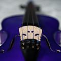 Purple Violin Bridge by Helen Northcott