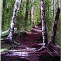 Purple Walk by Sibby S