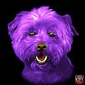 Purple West Highland Terrier Mix - 8674 - Bb by James Ahn