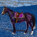 Purple Whiskey by Carole Boyd