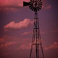 Purple Wind by Ricky Barnard