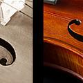 Quadriptych Of Musical Curves by Iordanis Pallikaras