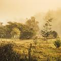 Quaint Countryside Scene Of Glen Huon by Jorgo Photography - Wall Art Gallery