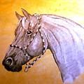 Quarter Horse W/ Rope Halter by Ray Krebs