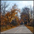 Quarterline Road by Tim Nyberg