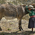 Quechua Girl Hugging His Donkey. Republic Of Bolivia. by Eric Bauer