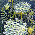 Queen Anne's Lace by Katherine Miller