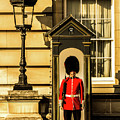 Queens Guards. by Nigel Dudson